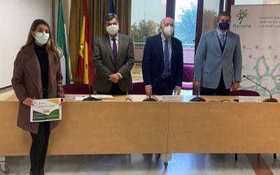 Flacema y la Universidad de Sevilla premian la investigación de jóvenes ingenieros