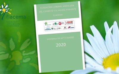 Memoria de Actividades de FLACEMA 2020